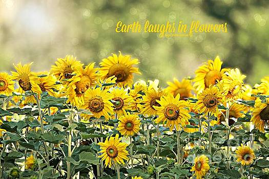 Earth Laughs in Flowers by Lila Fisher-Wenzel