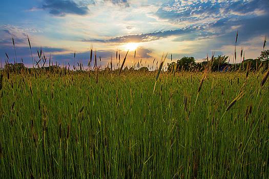 East Moriches Sunset by Robert Seifert