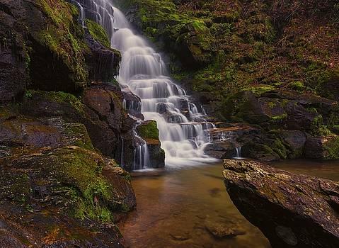 Eastatoe Falls by Reid Northrup