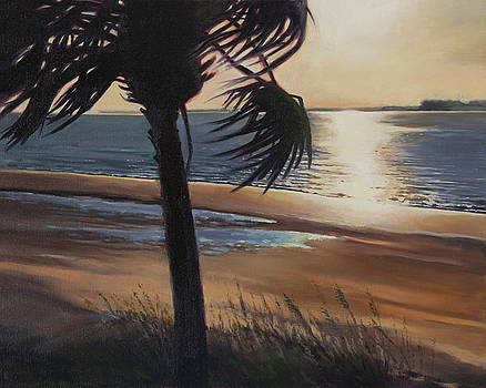 Edisto Sunset by Todd Baxter
