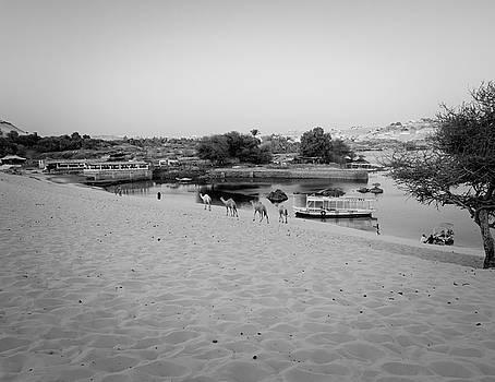 Egypt by Silvia Bruno