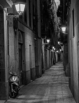 El Gotic by Gary Lengyel