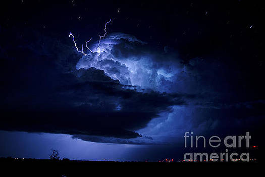 Electric Blue by Ryan Smith