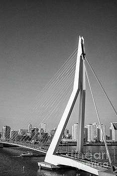 Patricia Hofmeester - Erasmus bridge in Rotterdam the Netherlands, Europe