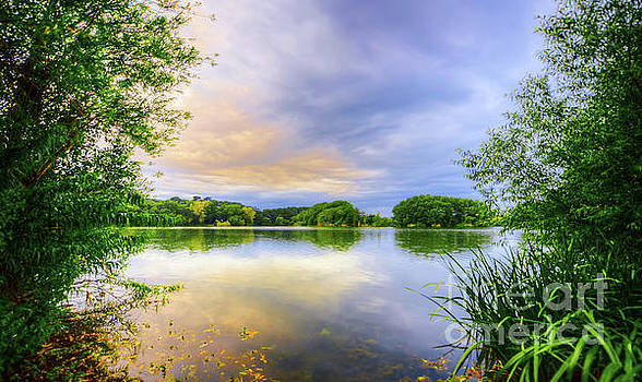 Svetlana Sewell - Evening Lake
