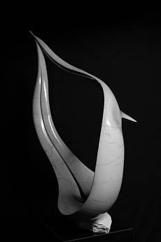 Evoluzione by Emanuele Rubini