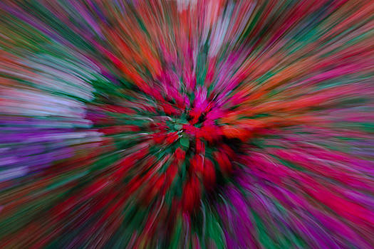 Explosion by Jorge Mejias