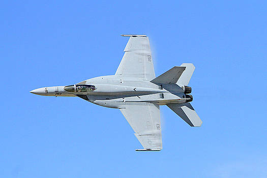 F-18 Hornet  by Shoal Hollingsworth