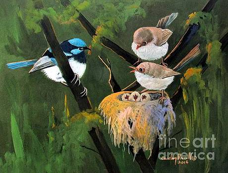 Fairy Wrens with chicks by Audrey Russill