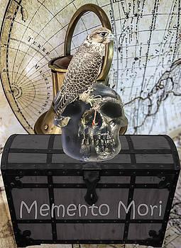 Falcon and skull  by Ivanoel Art