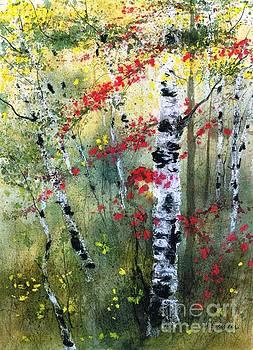 Fall Birches by Diane Splinter