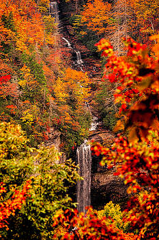 Fall Colors by Cathie Crow