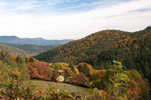 Fall colors in Vosges, France by Wim Slootweg