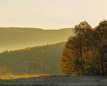 Fall Morning by Paul Duncan