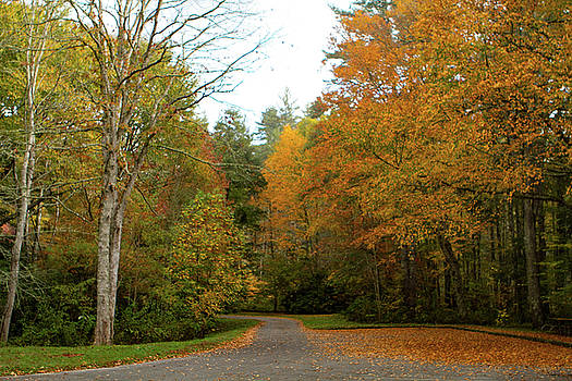 Fall on the Parkway by Karen Ruhl