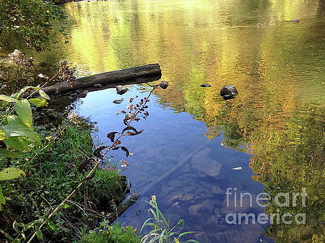Fall Reflection by Mark Messenger