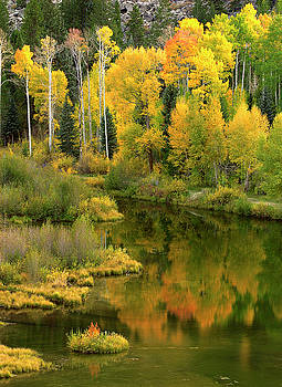 Fall Reflections Two by Jeff Jewkes