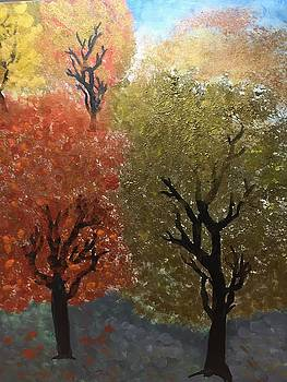 Fall Trees by Paula Brown