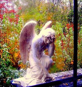 Fallen Angel by Ted Hebbler