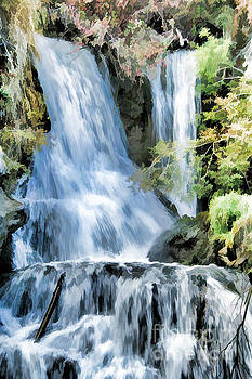 Roland Stanke - falls