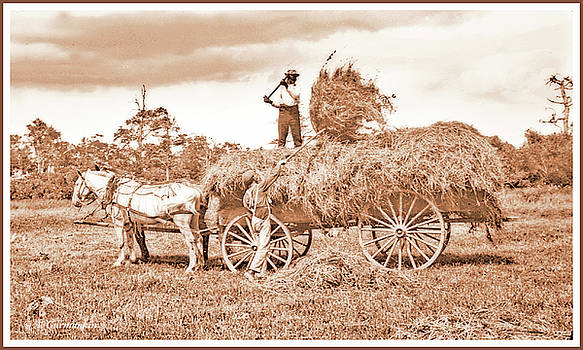 Farm Workers and Horse Drawn Hay Wagon, c.1902, Vintage Photogra by A Gurmankin