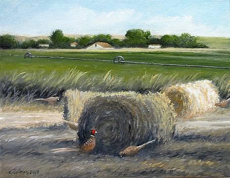Farmland by Boris Garibyan