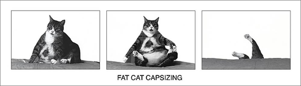 Fat Cat Capsizing by Richard Watherwax