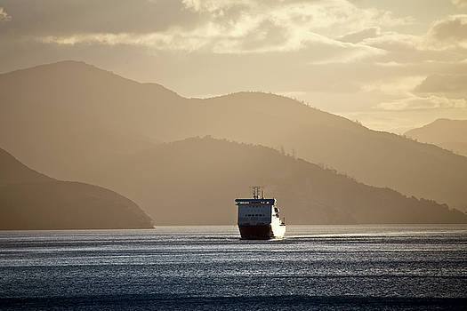 Ferry View Picton New Zealand by Mark Duffy