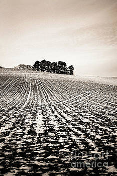 Field with snow-covered furrows. Auverge. France. Europe. by Bernard Jaubert