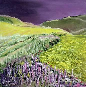 Derek Rutt - Fields Of Yellow