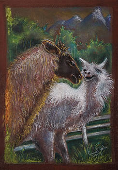 Fighting Llamas by Carol Jobe