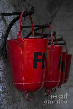Svetlana Sewell - Fire Buckets