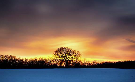 Fire In The Sky by Dan Hefle