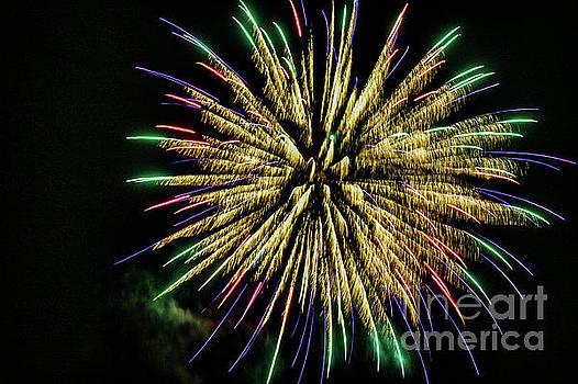Fireworks 1401 by Doug Berry