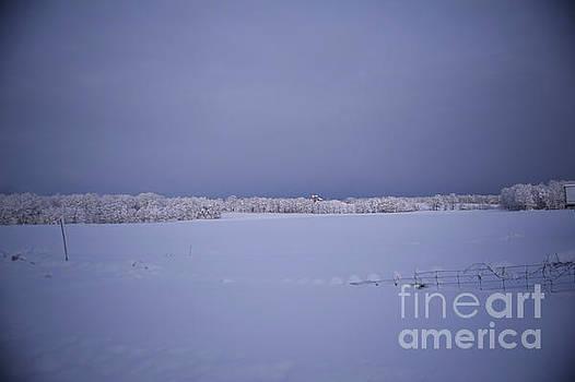 Elaine Mikkelstrup - First Snow
