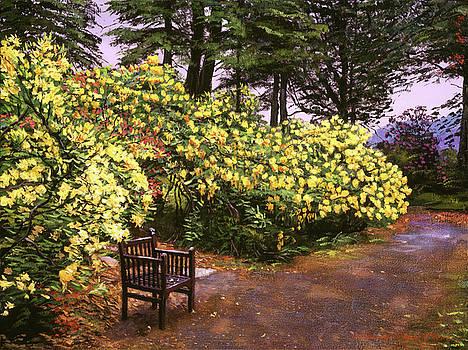 Flourishing Garden by David Lloyd Glover