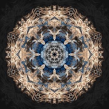 Flower Mandala by Filippo B
