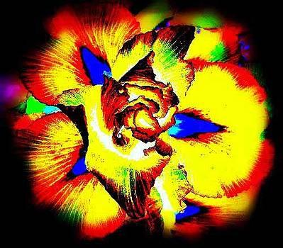 Flower of Gold  by Art Speakman