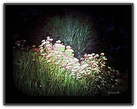 Flowers at Night by YoMamaBird Rhonda