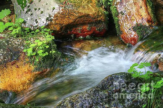 Flowing water between the boulders by Michal Boubin