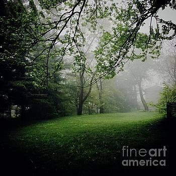 Frank J Casella - Fog on the Green