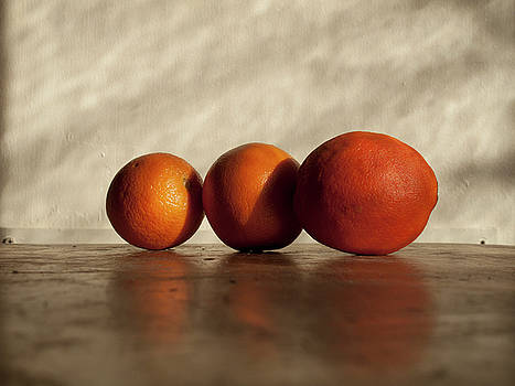 For the Love of 3 Oranges by Bucko Productions Photography