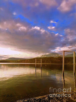 Freedom by Victor K