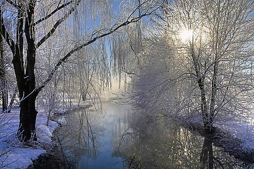 Frosty Morn 3 by Dan Myers