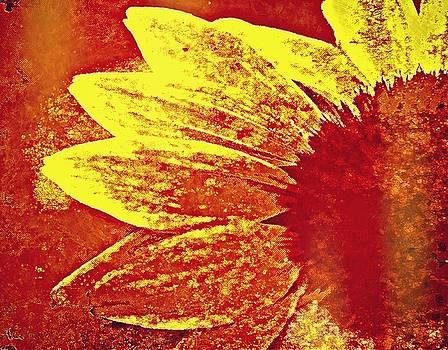 Funky Flower by Stephanie Calhoun