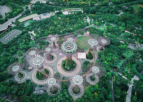 Gardens by the Bay by Evgeny Vasenev