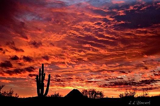 Gavilan Peak Sunset by L L Stewart