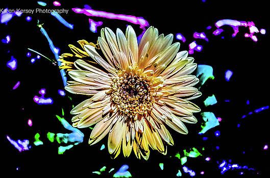 Gerber Daisy by Karen Kersey