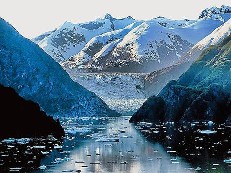 Glacier Bay by Sergey Nassyrov