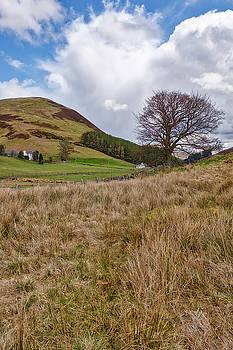 Jeremy Lavender Photography - Glendevon in Central Scotland